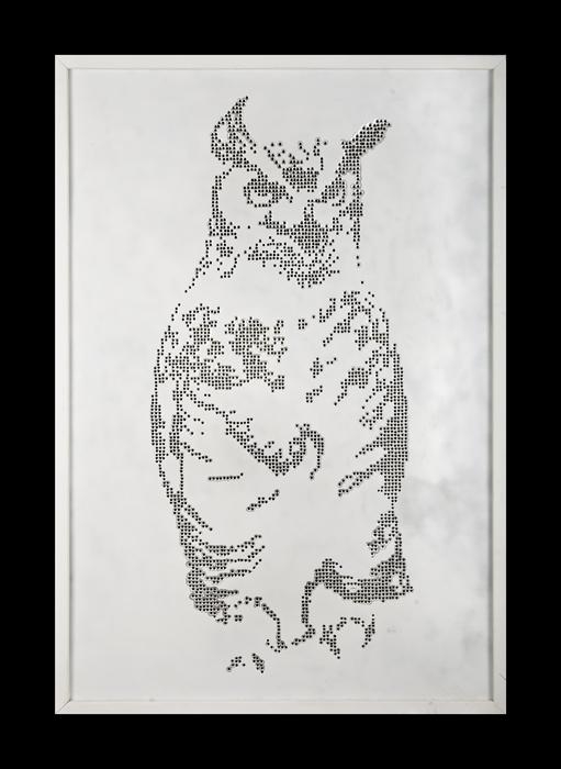 bullet-owl
